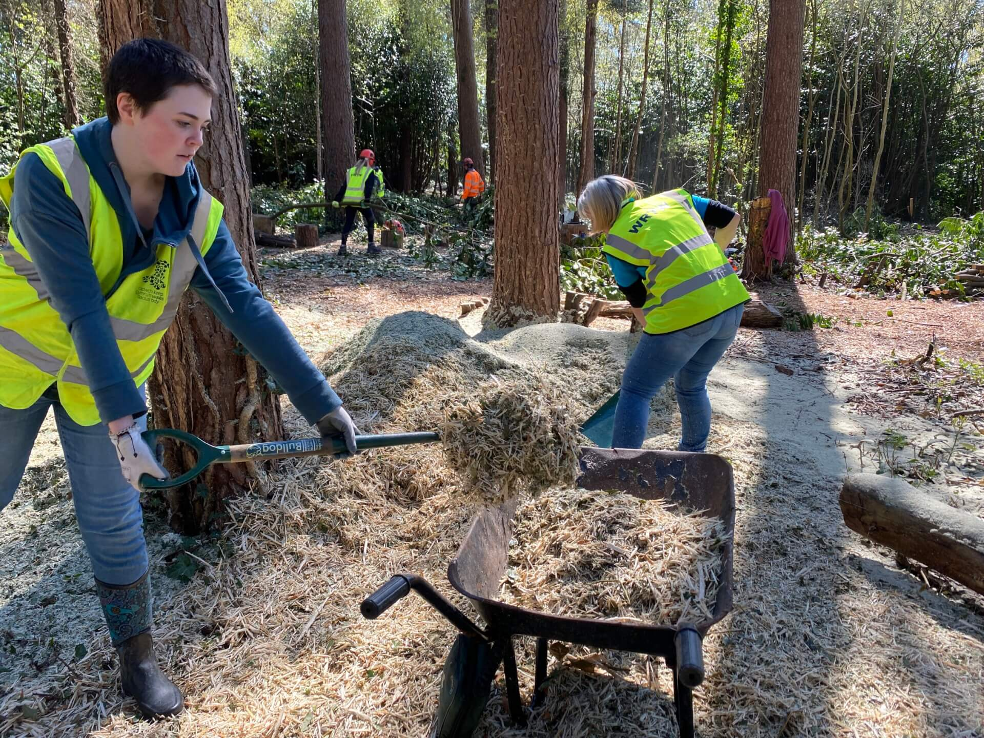 Woodland Volunteering Session